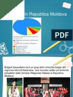 Bulgarii din republica moldova