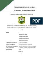 TRABAJO FINAL - GRUPO BERNABÉ.docx