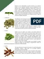 20 plantas medicinales q enfermedades cura y cuales son sus beneficios.docx