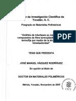 PMP_D_Tesis_2005_Jose_Vazquez_Rodriguez.pdf