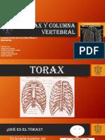 ANATOMIA_TORAX Y COLUMNA VERTEBRAL