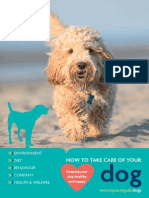 Dog_How to take care of your dog booklet_secure