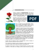 Biodecodificacion cuantica modulo 2.docx