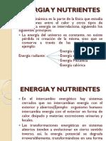 NECESIDAD ENERGETICA