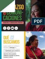 Brochure - Proyecto Liderazgo y Comunicaciones