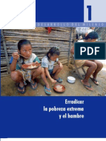 1- Erradicar La Pobreza Extrema y El Hambre