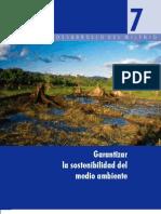 7- Garantizar La Sostenibilidad Del Medio Ambiente