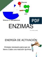 Biologia celular,  cbc uba ENZIMAS