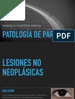 patologias de parpados PDF.pdf