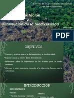 Ppt SEMINARIO disminución de la biodiversidad