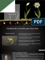 Lección 14 - La Semilla que Crece Sola.pdf
