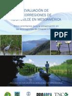 ERP AguaDulce Meso V1