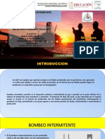 SISTEMA ARTIFICIAL DE PRODUCCIÓN BN INTERMITENTE