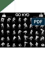 Judo GoKyo Poster