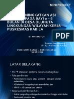 MINI PROJECT - PKM KABILA.pptx