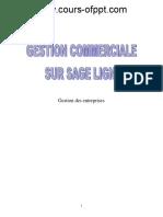 gestion_comercials_sur_sage_ligne_100