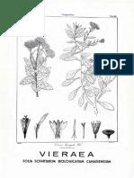 02 Vieraea 1