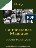 Extrait-Roy-PuissanceMagique.pdf