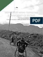 Monitor de Minas Terrestres y Municiones en Racimo 2010