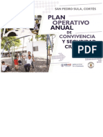 Plan Operativo Anual 2019_SPS