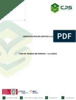 METODOLOGIA PARA DESARROLLAR RBI - CAMPO CUERVA