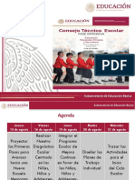 Consejo Técnico Escolar Fase Intensiva19-20