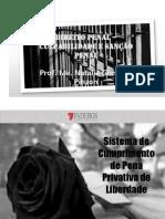 Aula 7 - Sistema progressivo cumprimento PPL
