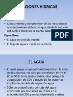 POTENCIAL DEL AGUA EN EL SUELO