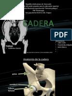 cadera zakie (1).pptx