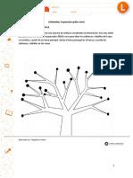 Organizador gráfico árbol