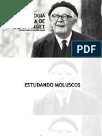 ESPISTEMOLOGIA GENÉTICA DE JEAN PIAGET.ppt