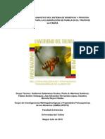 EVALUACION Y DIAGNOSTICO DEL SISTEMA DE BENEFICIO Y PROCESO DE JUGO DE CAÑA PARA LA ELABORACION DE PANELA EN EL TRAPICHE LA PAERIA