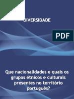 1233616680_diversidade[1]