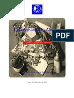 termo problemas UAlg.pdf
