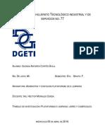 Plataformas_libres_y_comerciales.docx