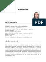 HOJA DE VIDA Yamile Olarte