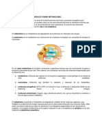 pt2.metabolisme selectividad