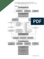 research paradigm gray