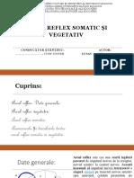 arcul reflex somatic si vegetativ (2).pptx