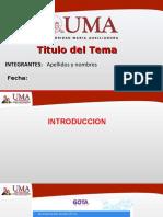 PPT-formato análisis-uma
