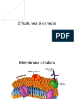 197279285-Lp-5-Difuziunea-Osmoza-Si-Mecanismele-de-Transport.pdf
