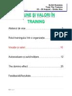 Draft suport de training - Viziune si valori in training - Alin Hildan-Macavei