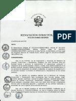 r. d. 010-2015-Guia de Ejecucion