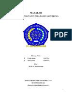 216100551-MAKALAH-SKIZOFRENIA.docx