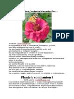 Plante companion,Controlul daunatorilor...