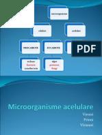 Arhitectura virională.pdf