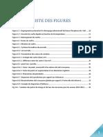 rapport  2015 final.pdf