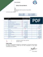 130191937-Cedula-Sumaria-y-Centralizada.docx