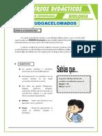 Pseudoacelomados-para-Segundo-de-Secundaria