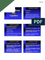 metabolismo_dos_lipidios_2010.pdf